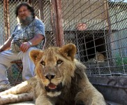 photo of Terry Brumfield's lion