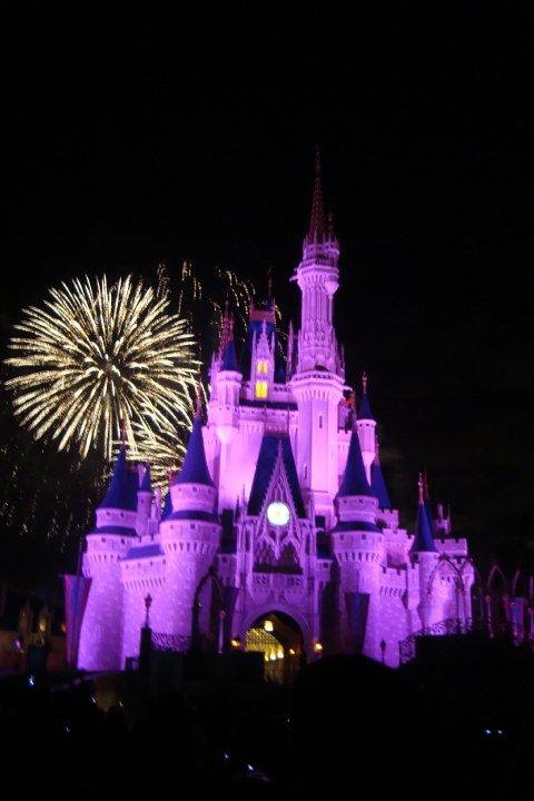 Walt Disney Logo Castle. Walt+disney+world+castle+