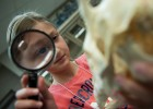 Photo of a girl looking through a magnifying glass
