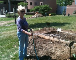 Photo of Dr. Linda Ramey watering the Wright State University community garden.