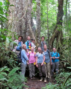 Photo of Wright State students in a rainforest in Suriname
