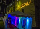 Record high attendance for 2013 ArtsGala