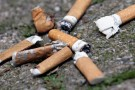 No butts about it—Volunteers will clean Wright State of littered cigarettes