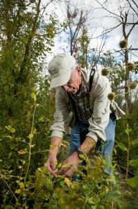 Jim Amon in the Beaver Creek Wetlands