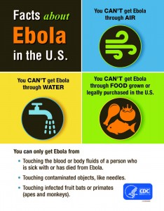 Ebola infographich