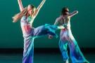 Dance_2014-2739--700x550