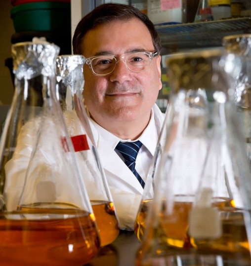 Julian Gomez-Cambronero in his lab