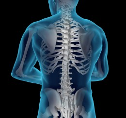Wright State Physicians Orthopaedics to offer educational session about spine conditions