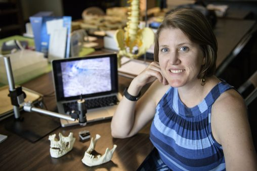 Amelia Hubbard's current research looks at what ancient DNA and tooth features can tell about the movements and interactions between past peoples.