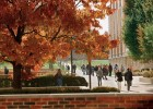 Photo of Wright State University in the fall
