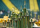 Photo of a line of green trophies